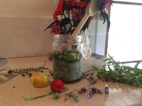 Making herbal tinctures